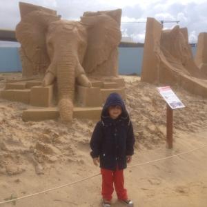 Jack loved the elephant